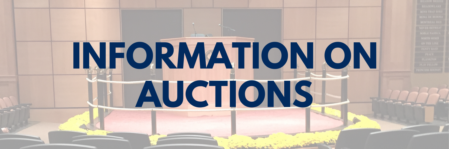 Information_on_auctions