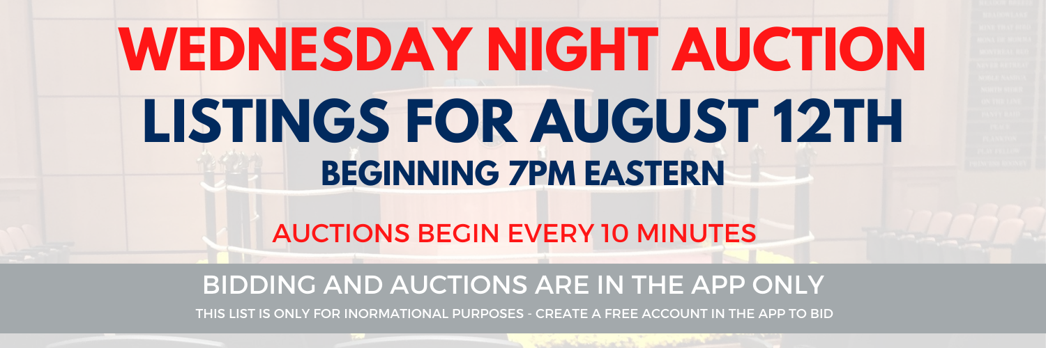 Auction Page Header with Date