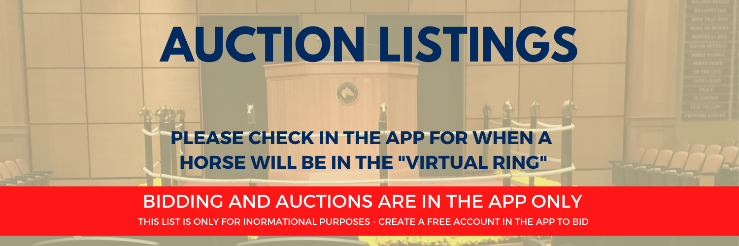 Auction Page Header